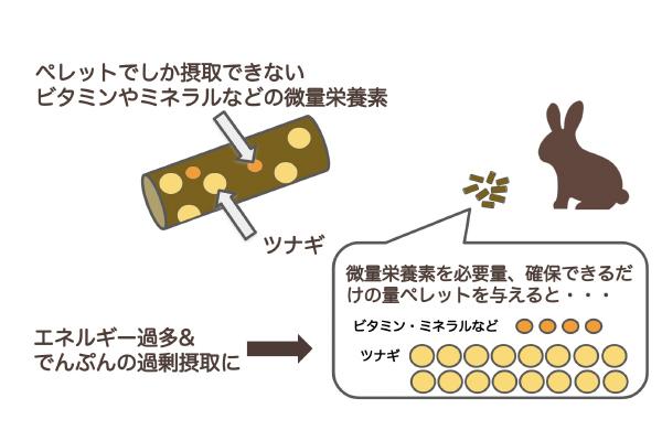 フードにはツナギが多く含まれている説明図